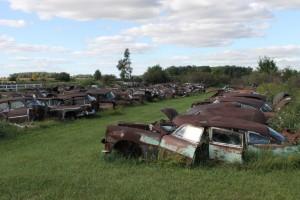 car cemetery 1