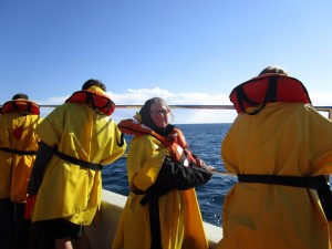 On the boat to the whales